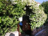 Casa_vacanza_San_Teodoro_Residence_Asfodeli_C_1